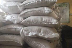 Over 100 sacks of plastic rice siezed