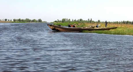 Lake Chad Basin, Borno State