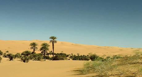 Sokoto Sahara Desert