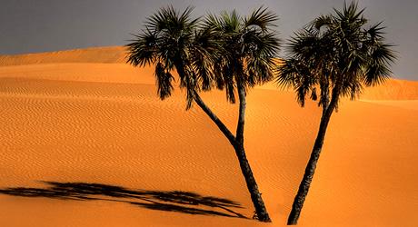 Kuri Wakko sand dunes, Yusufari, Yobe State