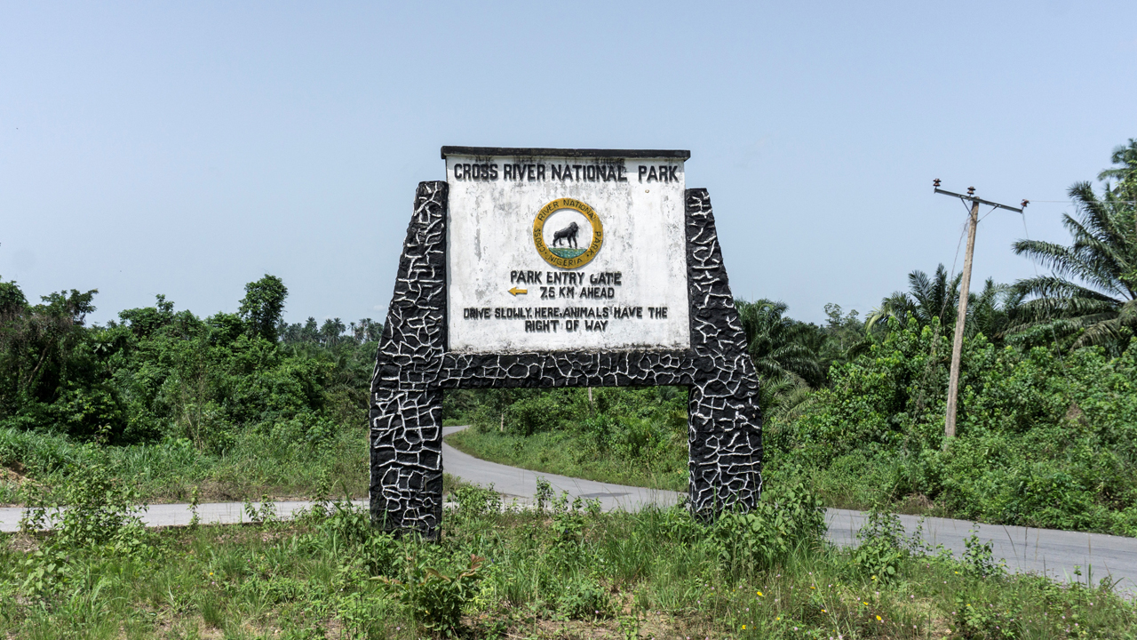 Photo of Cross River National Park