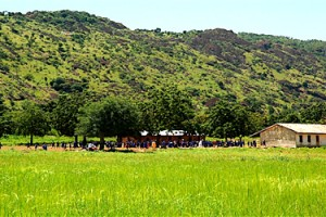 Yobe State History, Tourist Attractions, Hotels & Travel Information