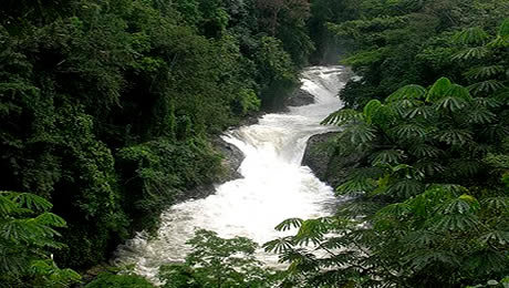 Photo of Kwa Falls, Cross River State
