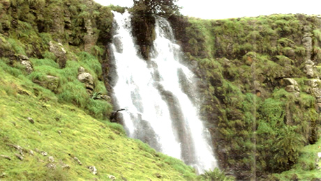 Photo of Mambilla Plateau, Taraba State